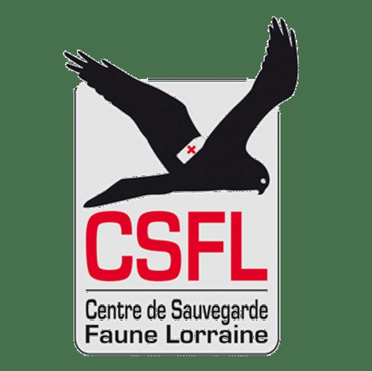 LorEEN_CSFL