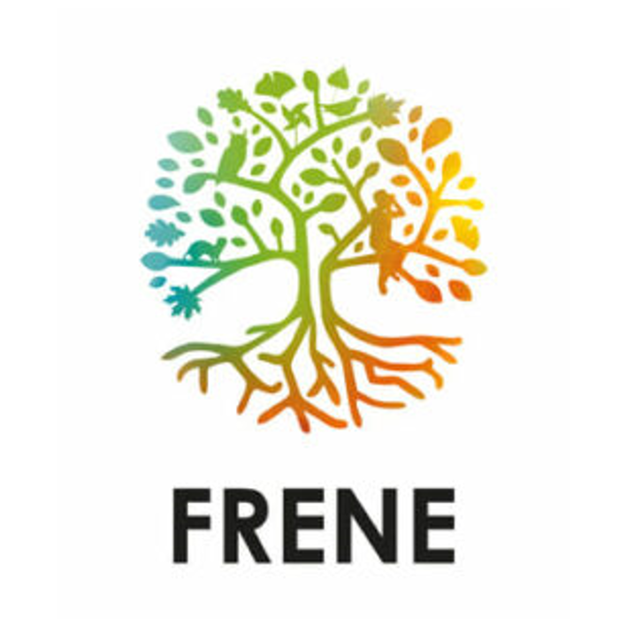 Loreen Frene